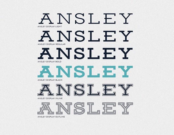 Ansley Display5