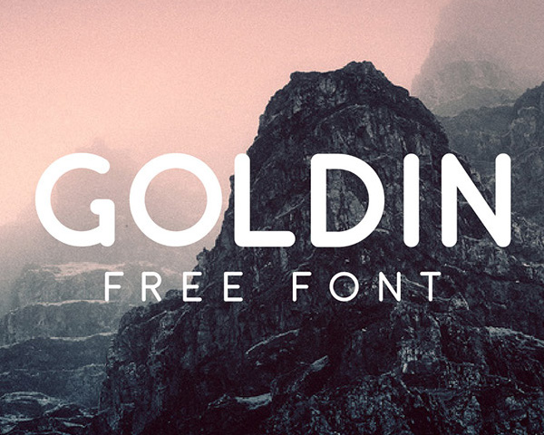 Goldin1